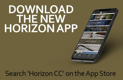 The Horizon CC App
