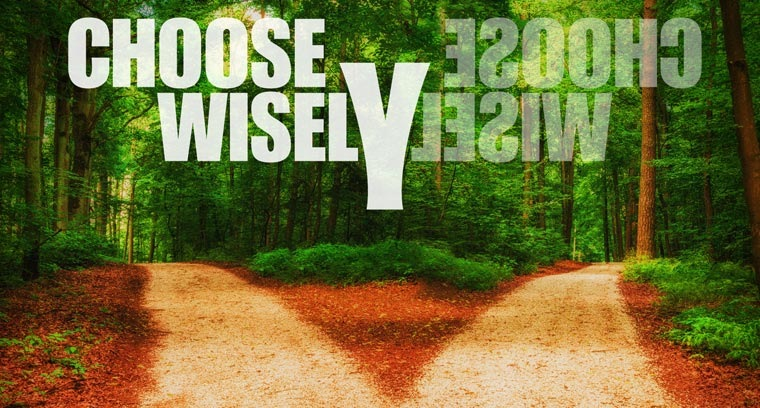 Choose Wisely:  Making Decisions That Work