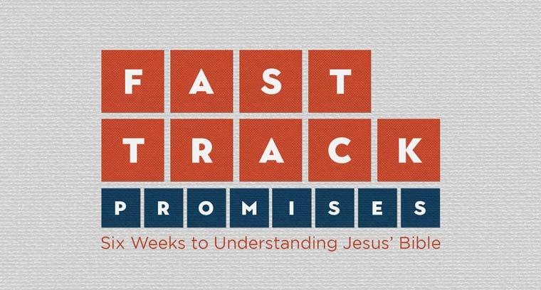 Fast Track Promises: Six Weeks To Understanding Jesus' Bible
