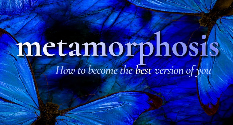 Metamorphosis: How To Become the Best Version of You
